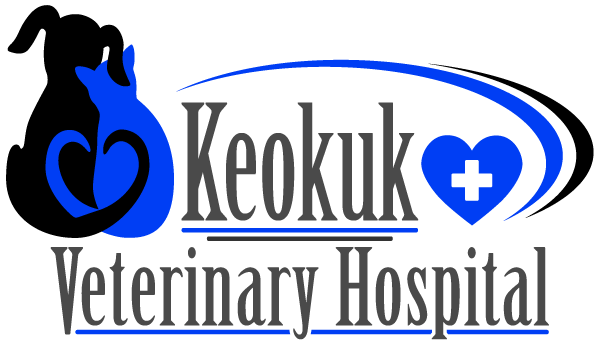 Keokuk Veterinary Hospital