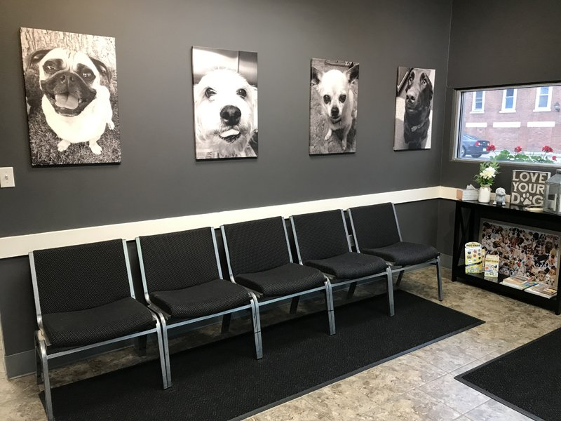 The waiting area in the front of the clinic