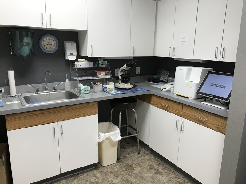 The in hospital laboratory